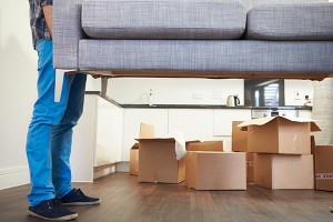 Chattanooga Moving Specialists